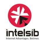 Intelsib - продвижение сайтов в поисковых системах